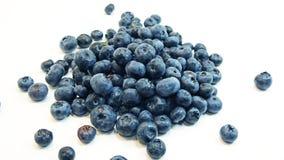 Myrtille bleue Photo libre de droits