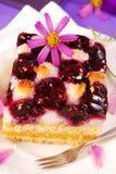 Myrtille et gâteau de noix de coco Images stock