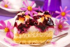 Myrtille et gâteau de noix de coco Images libres de droits