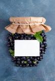 Myrtille fraîche Image libre de droits