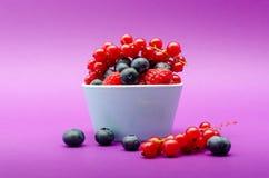 Myrtille, groseille rouge et framboises savoureuses Photos stock