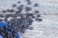 Myrtille sur le fond en bois de table, bol de myrtilles Antioxydants, régime de detox, fruits organiques Baies Image stock