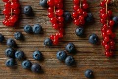Myrtilles de préparation de baies et groseilles rouges Photo stock