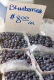 Myrtilles du marché d'agriculteurs Images stock