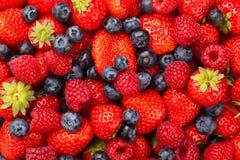 Myrtilles et framboises de fraises Photographie stock