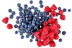 Myrtilles et framboises organiques fraîches Riches avec des vitamines D'isolement sur le fond blanc Photo libre de droits