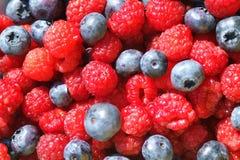 Myrtilles et Raspberrries Photo stock