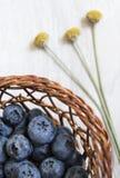 Myrtilles fraîches dans un panier tissé Photo libre de droits