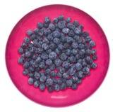 Myrtilles fraîches dans une cuvette rose vibrante photo libre de droits