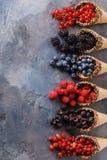 Myrtilles mûres de baies, framboises, groseilles, mûres images stock