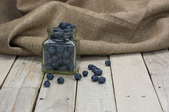 Myrtilles renversées d'un pot Photographie stock
