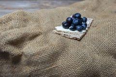 Myrtilles sur le pain croustillant Photo stock