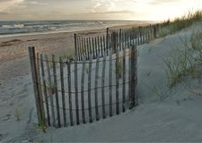 Free Myrtle Beach Dunes Royalty Free Stock Photography - 102050307