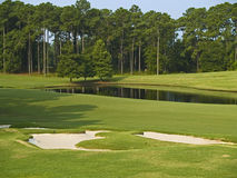 Myrtle Beach Golf royalty free stock images