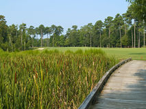 Myrtle Beach Golf course Royalty Free Stock Images