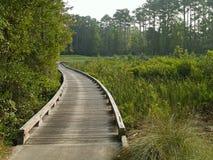 Myrtle Beach Golf course Stock Photography