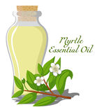 Myrtle essential oil Royalty Free Stock Images