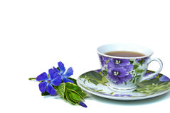 Myrtle with tea Royalty Free Stock Photo