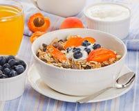 Mysli med yoghurt och bär sund frukost arkivbilder