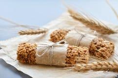 Myslistänger med wheatearen Royaltyfria Bilder