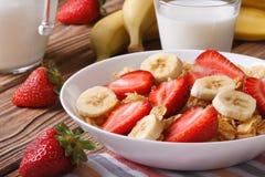 Myslit med nya jordgubbar och en banan och mjölkar i en tillbringare Royaltyfri Fotografi