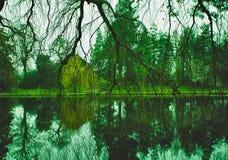 Mystère dans les bois Image libre de droits