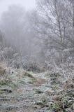 Mystère de l'hiver Images stock