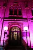 Mystère violet Images libres de droits