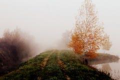 Myst del otoño Imagen de archivo libre de regalías