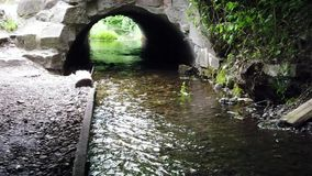 Mysteriöse alte Brücke mit Fluss stock video