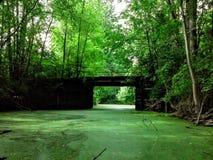 Mysteriöse verlassene Brücke Stockbilder