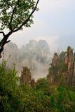 Mysteriöser Berg Zhangjiajie. Stockfotos