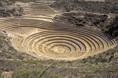 Mysteriöser Moray Agricultural Terraces der Inkas, Cusco Peru stockfotos