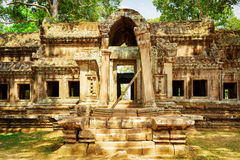 Mysteriöser Ta Kou Entrance in Angkor Wat Stadtzentrum von Siem Reap, Kambodscha Stockfoto