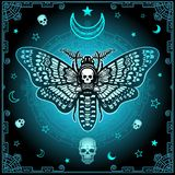 Mysterious background: the stylized color image of a moth the Dead Head, a mystical circle, a decorative frame. Stock Photos