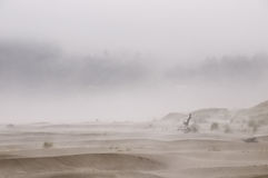 Mysterious beach. Mist surrounds the background on a lonely beach with hills and driftwood hidden in the fog Royalty Free Stock Images