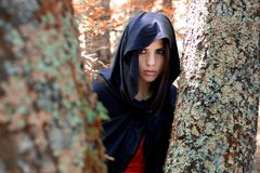 Mysterious beautifoul woman with mantle in  magic forest. Beautiful young woman hidden among the trees looking at something. Fantasy woods Stock Photography