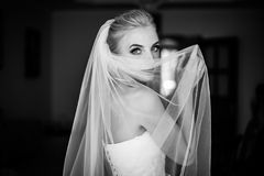 Mysterious beautiful blue eyes blonde bride hiding behind veil b Royalty Free Stock Photo