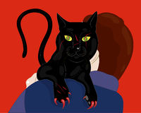 Mysterious black cat. Stock Photography