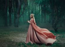A mysterious blonde girl in a long pink dress with a train and a raincoat that flutters in the wind. The wizard leaves. In a forest covered with fog. A stock images