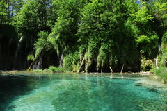 Mysterious blue paradise in Plitvice Lakes Royalty Free Stock Images