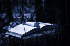 Mysterious Book at Night stock photography