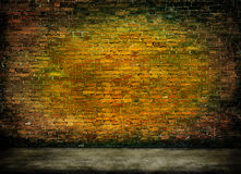 Mysterious brick wall. Colorful dark brick wall texture with foreground Royalty Free Stock Photo