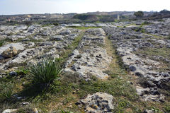 Mysterious cart ruts in Malta. Royalty Free Stock Images