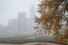 Mysterious castle in fog with autumn tree on the front stock photo