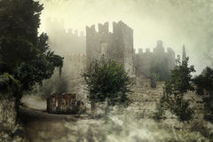 Mysterious castle. Mysterious medieval castle in the misty rise stock images