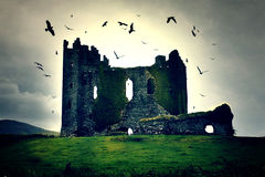 Mysterious castle. Surrounded by birds in Ireland Royalty Free Stock Photography