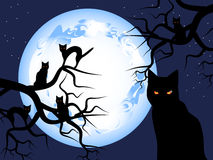 Mysterious-cats. Halloween. Mystical night. The mysterious moon in the sky. Black cats sit on trees vector illustration