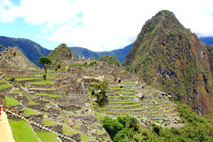 Mysterious city of Machu Picchu, Peru. Stock Photography