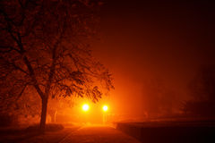 Mysterious empty footpath in morning mist in red orange tone. Mysterious empty footpath in morning mist with tree silhouette  in red orange tone sky Stock Photo